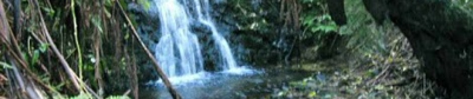 cropped-waterfall.jpg